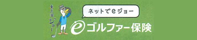 東京海上日動のeゴルファー保険